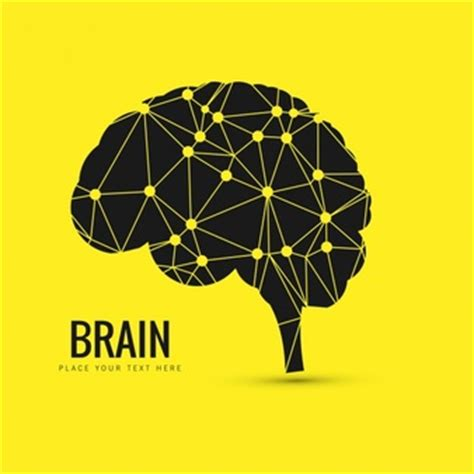 Essay on power of human brain